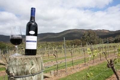 Wijn uit Australië